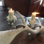 Antler Candle Abra Work of Art